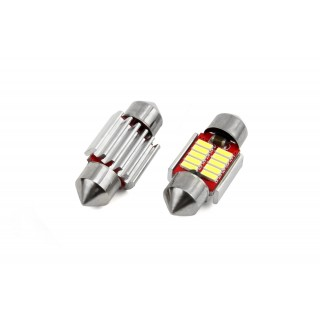 31mm LED Buislampjes met 10 SMD LEDs - CanBus